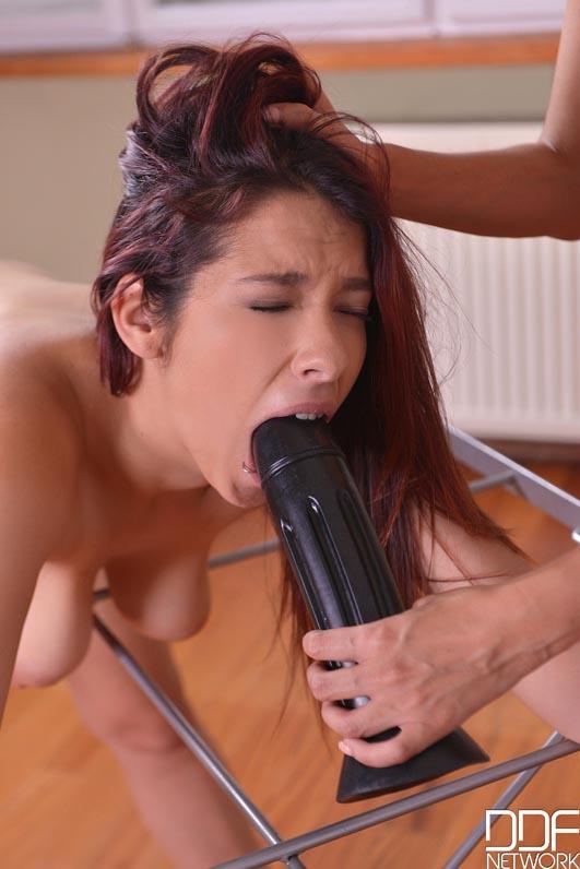Zenda Sexy